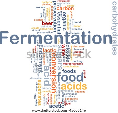Background concept wordcloud illustration of fermentation food process