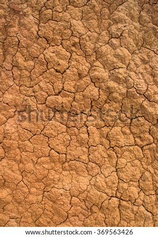 Background dry sand.