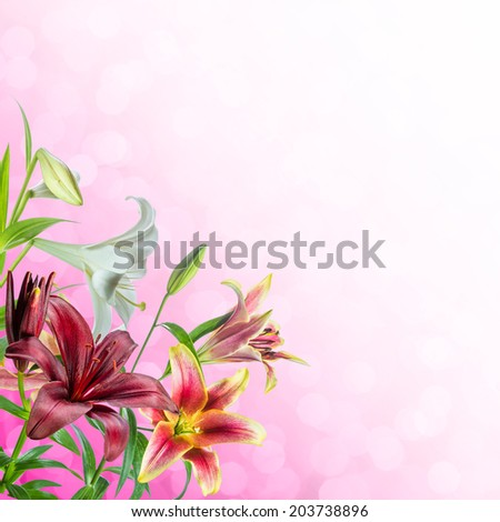 Background for design with flowers