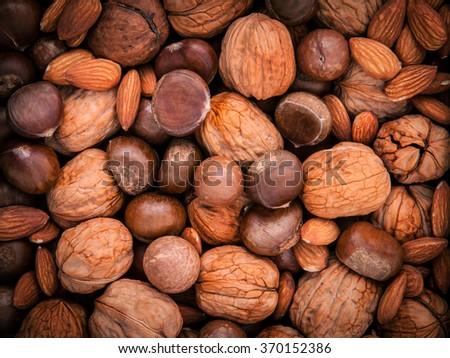 Background from different kinds of nuts in shells ,cashew, almond, walnut, hazelnut, pistachio, hazelnuts, pecan and  macadamia. - stock photo