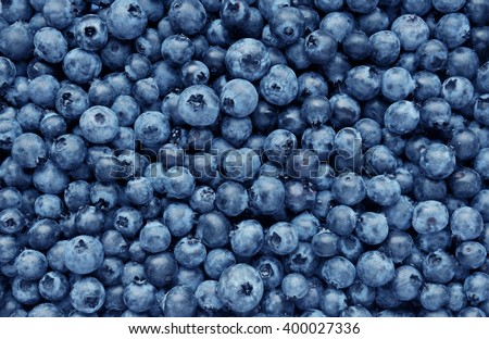 Background from freshly picked blueberries - stock photo