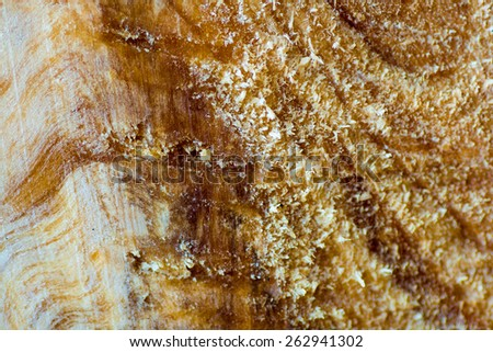 background from natural fibers natural wood - stock photo