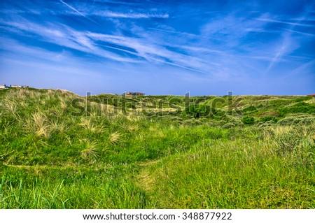 Background image of lush grass field under blue sky North Sea, Zandvoort near Amsterdam, Holland, Netherlands, HDR - stock photo