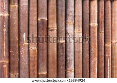 Background made from brown giant bamboo cane