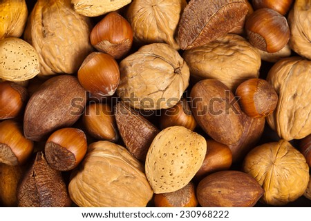 Background made from different kinds of nuts - stock photo