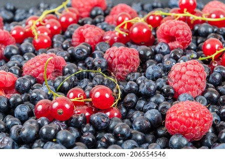Background made of blueberries, raspberries and red currant