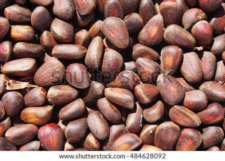 Background made of close up cedar nuts