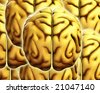 Background made out of human brains. - stock photo