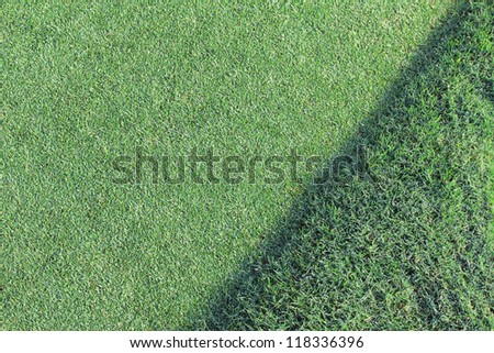 background o a golf green - stock photo