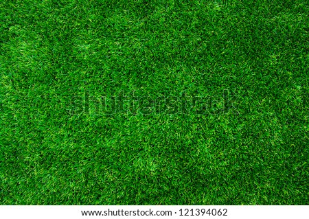 Background of a grass - stock photo
