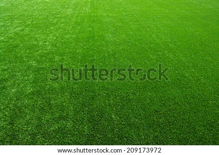 Background of a green grass. Texture green lawn - stock photo