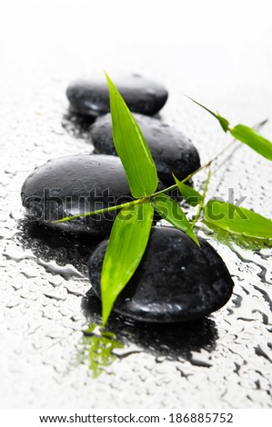 background of a spa black stones, and a sprig of green bamboo - stock photo