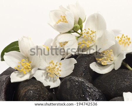 Background of a spa with black stones, white blossoms and green leaves. Selective focus. - stock photo