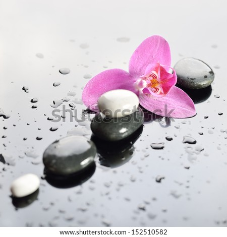 background of a spa with stones, and orchid flower - stock photo