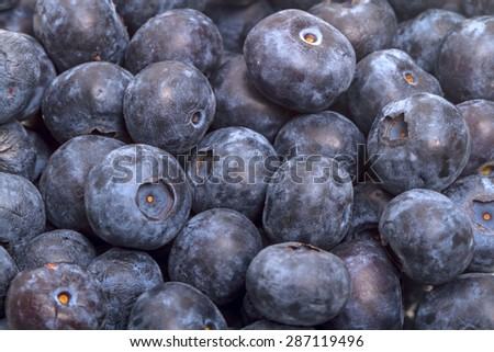 Background of big ripe  great bilberry - stock photo