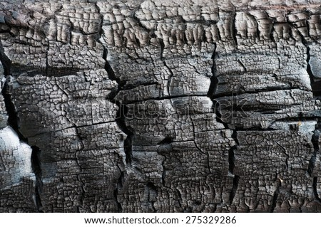 background of burnt wood texture - stock photo