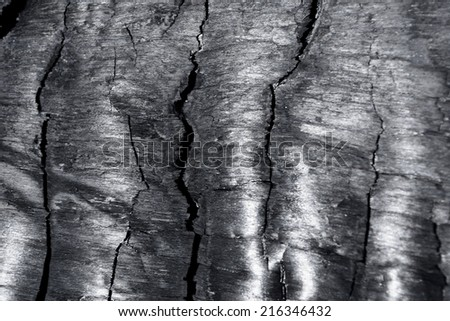 Background of charcoal - stock photo