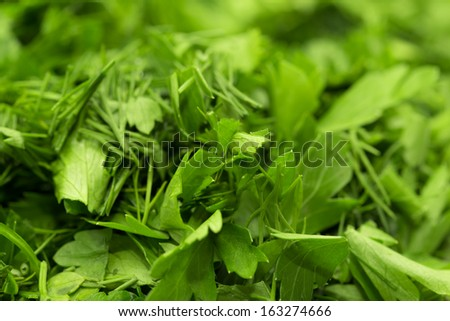 background of chopped fennel with parsley. macro - stock photo