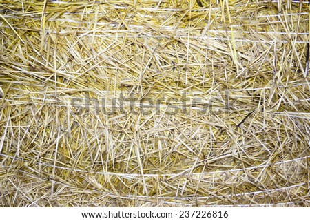 background of close-up bale of straw - stock photo