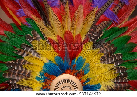 background of colorful feathers arranged into a fan