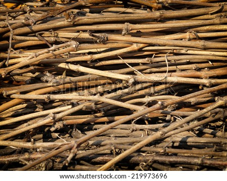 Background of dry branches of grapes. - stock photo