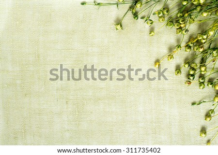 background of dry flax plant capsules on linen napkin - stock photo