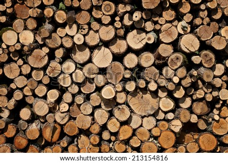 Background of firewood stacked in the woodpile  - stock photo