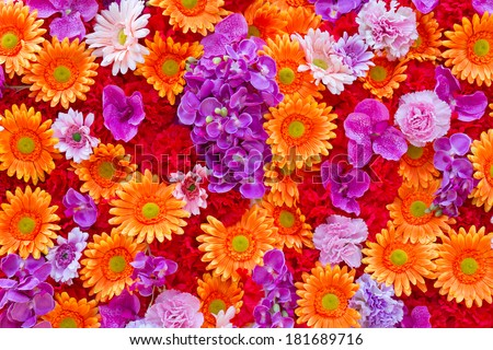 Background of Flowers Field. - stock photo