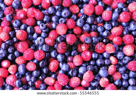 background of forest wild strawberry and bilberry - stock photo