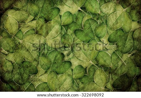 background of green clover for design - stock photo