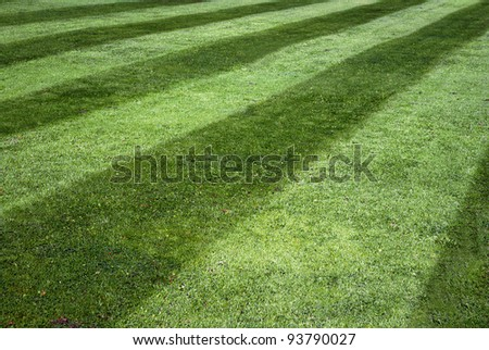 Background of green lawn with stripes - stock photo