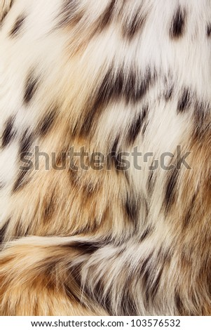 Background of lynx spotted fur. Close-up image. - stock photo