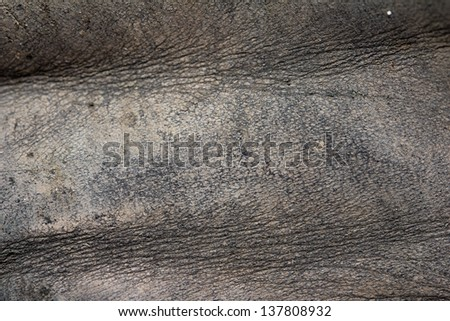 background of old, dirty skin - stock photo