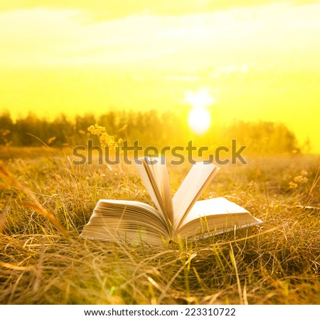 Background of opened book with landscape - lying in autumn field or meadow on yellow and green grass on sunset sky and forest backdrop against sun light Empty copy space for inscription  - stock photo