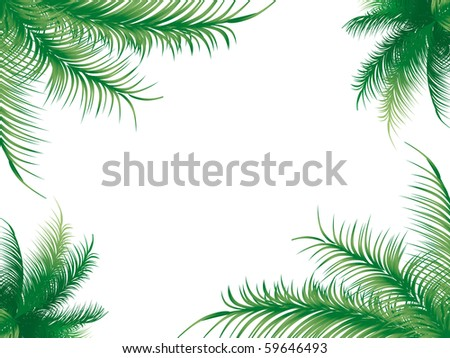 Background of palm leaves