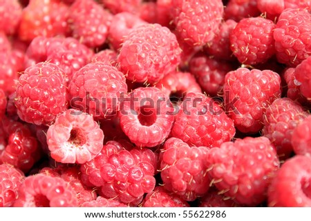 Background of raspberry