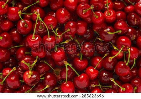Background of ripe juicy red cherries. A bunch of ripe berries. - stock photo