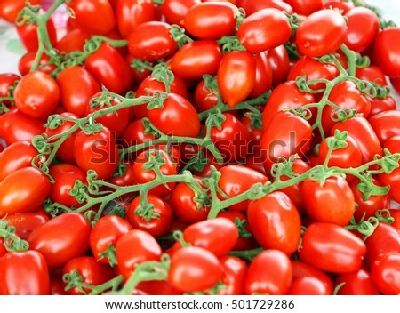 background of ripe red tomatoes just harvested in southern Italy
