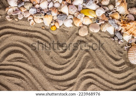 Background of sand, shells and sea start - stock photo
