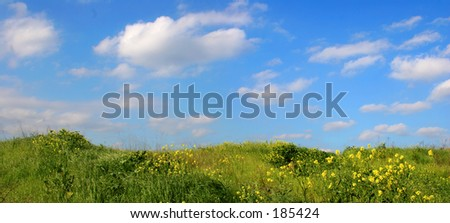 Background Of Sky And Grass - wide view