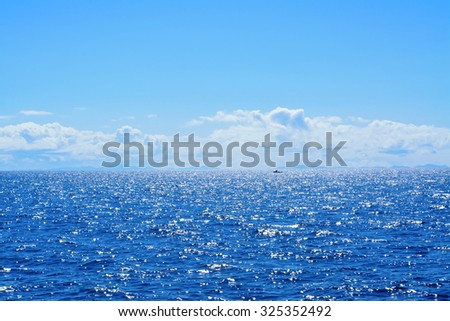 Background of sparkling sea water on a bright sunny day. Concept of serenity and bliss. Soft focus - stock photo