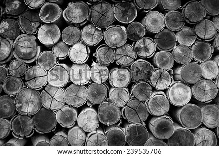 Background of stacked timber logs,Black and white concept. - stock photo
