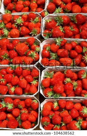 Background of strawberries in boxes - stock photo