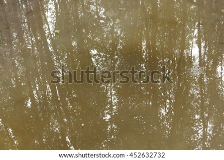 Background of trees mirrored on dun water surface.