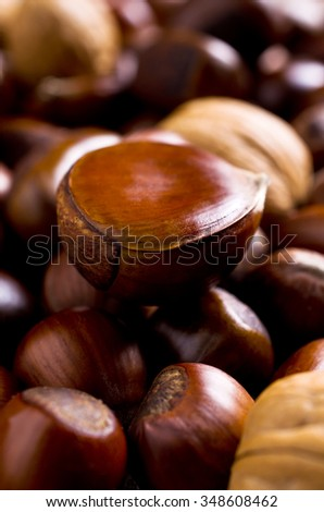 Background of various large brown nuts. Selective focus.