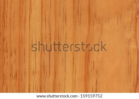Pinus radiata stock photos images pictures shutterstock for Y furniture greymouth