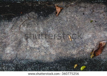 Background old rough cement wall plaster, dry leaves, the originals - stock photo
