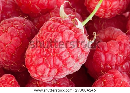 background on the basis of a ripe raspberry - stock photo