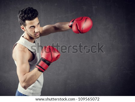 background photo with copyspace of boxer - stock photo