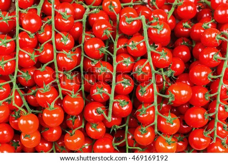 background picture of red tomatoes on the vine